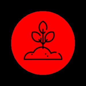 icono Insumos 1
