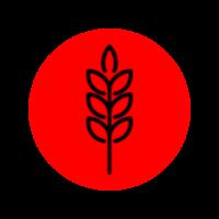 icono granos 1